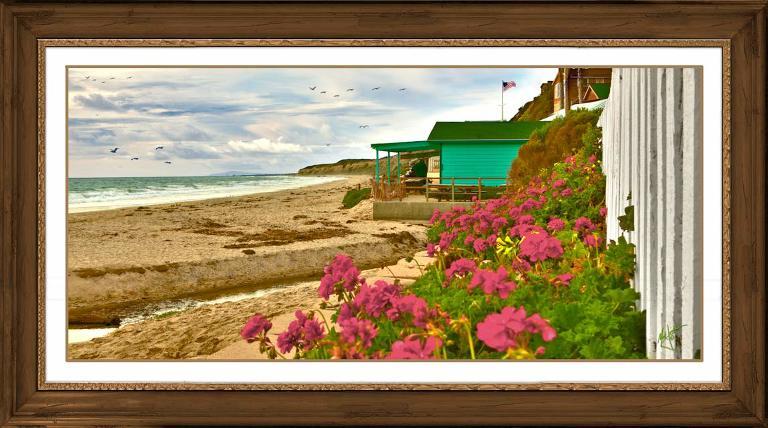 Laguna Beach Portrait Photographer at Crystal Cove in Laguna Beach